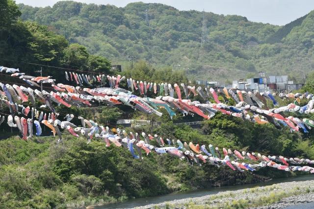 相模川鯉のぼり20170400000012