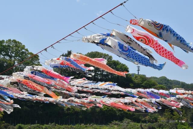 相模川鯉のぼり20170400000014