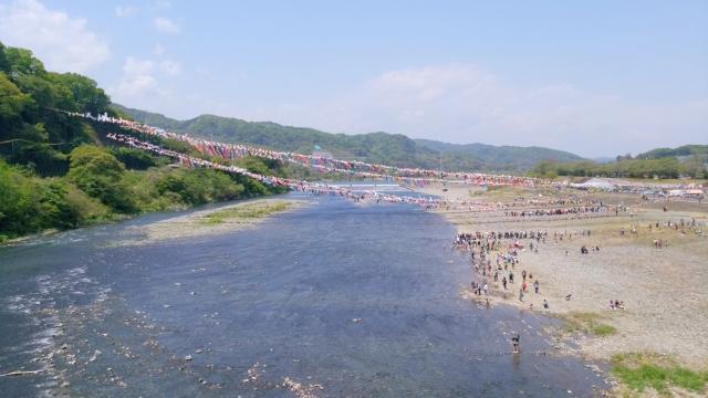 相模川鯉のぼり20170400000016