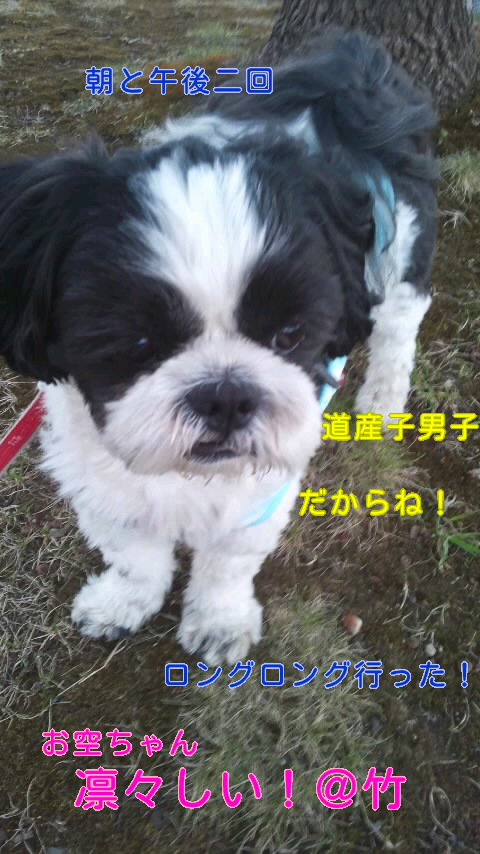 moblog_02791c4a.jpg