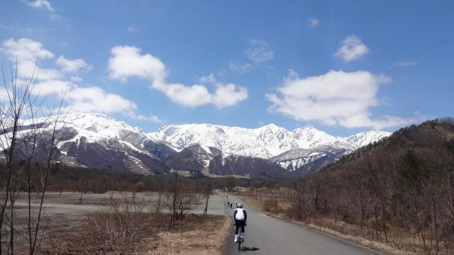 山へ伸びる道