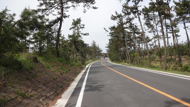 県道319砂丘道路