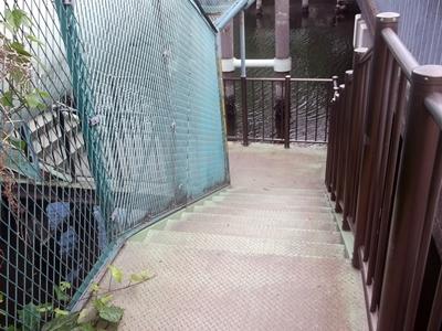 keDSCF6584巴橋