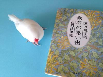 sosekitsumabunko_.jpg