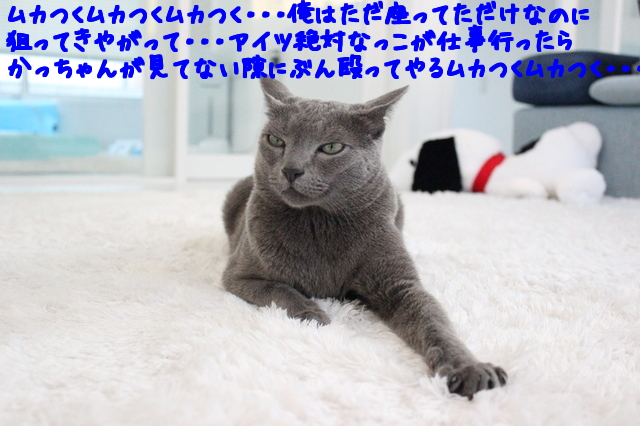 H_od8_N006fvBNU1497928405_1497928595.jpg