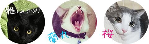 fukunekobentou_image3
