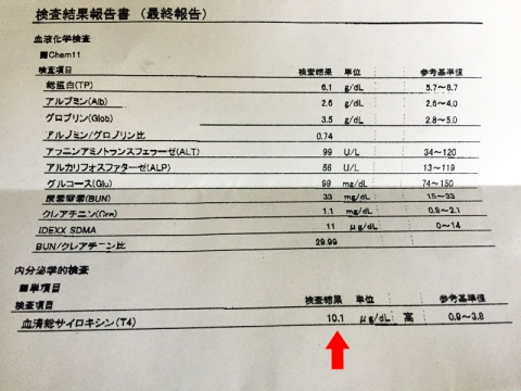 ketsuekikensa_060317