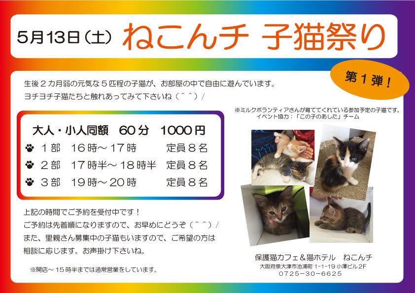 5月13日 子猫祭り チラシ
