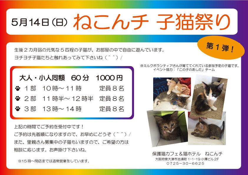 5月14日 子猫祭り チラシ