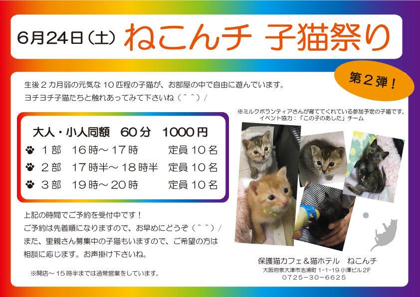 6月24日 子猫祭り チラシ
