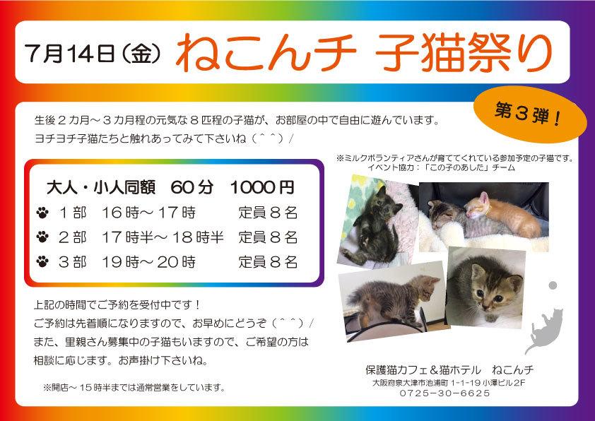 7月14日 子猫祭り チラシ