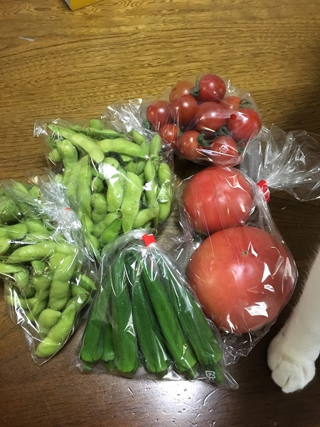 h29,6野菜