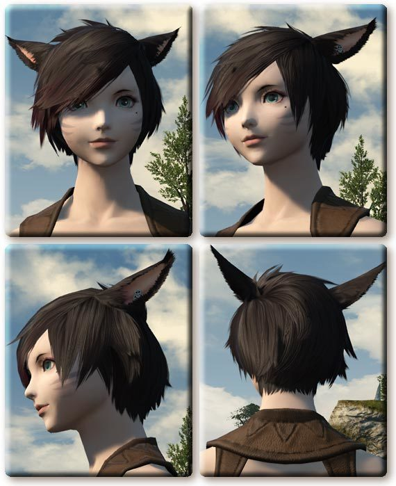 【FF14】4.0パッチ(紅蓮パッケ)分の髪形追加