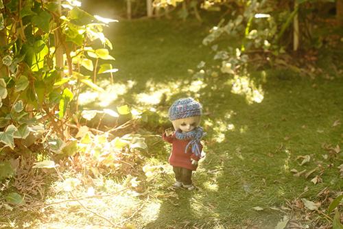 WITHDOLL、Happy Ending Story - Wolf Rudyのルディ、友達のキオを探して、ウロウロ。