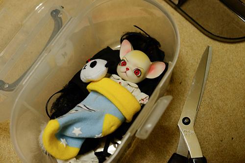 球体関節人形の動物ドール、パンジュ・ブラックルシアン・ロイ。収納BOXの中で、こんな状態になっていた。