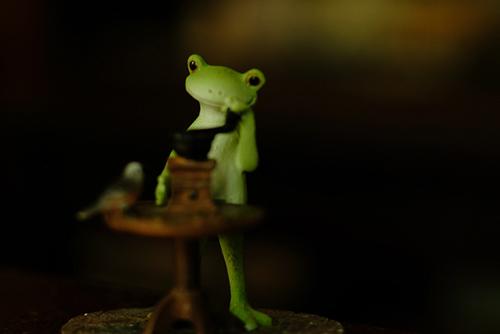 カエルのコポー、コーヒー豆を挽いているカエルさんを曳舟のカフェ・そらだねさんに連れて行きました。