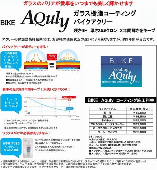 bikeaquly01.jpg