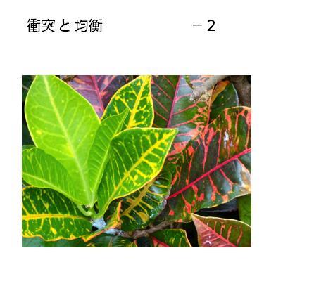 03_2017052107113200c.jpg