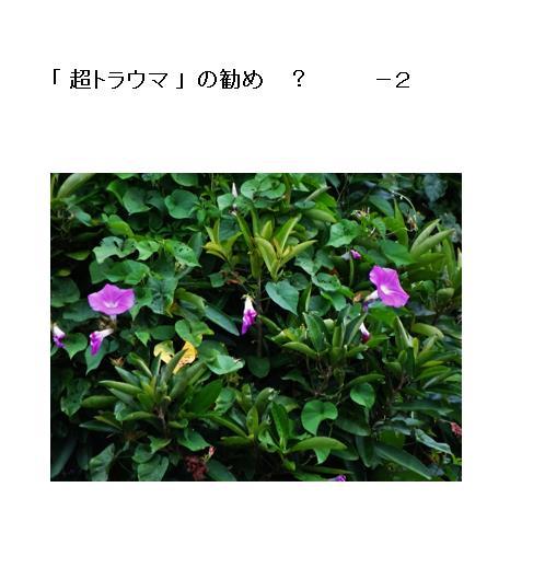 03_201705260930086e0.jpg