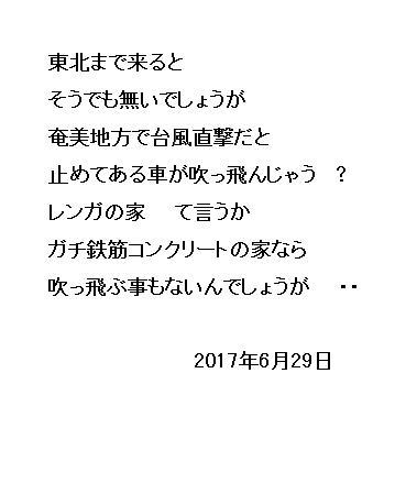 06_20170629095335fbb.jpg