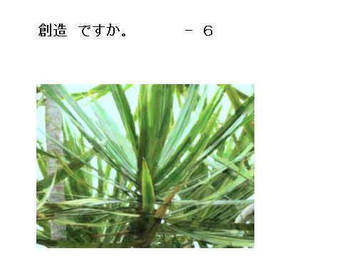 11_20170509102408df7.jpg