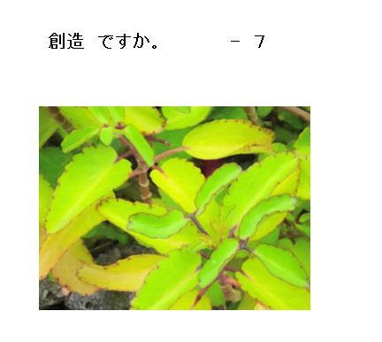 13_20170509102411366.jpg
