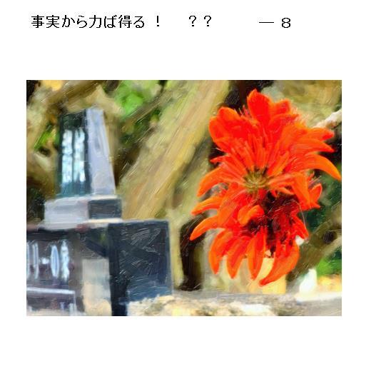 15_2017052910033103e.jpg