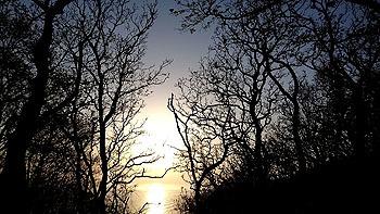 20170616_判官館からの夕陽