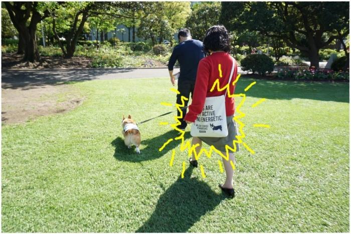 お散歩バック11