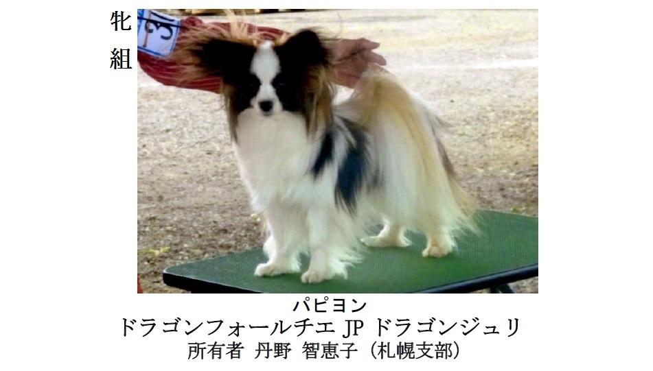 20170514札幌CH展成績-10