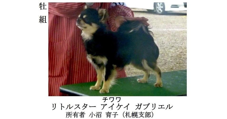 20170514札幌CH展成績-11
