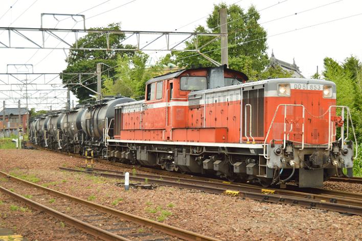 DSC_1855-2-1.png