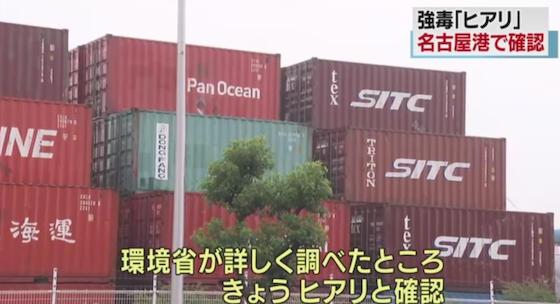 ヒアリ 特定外来生物 世界の侵略的外来種ワースト100 神戸港 名古屋港 中国