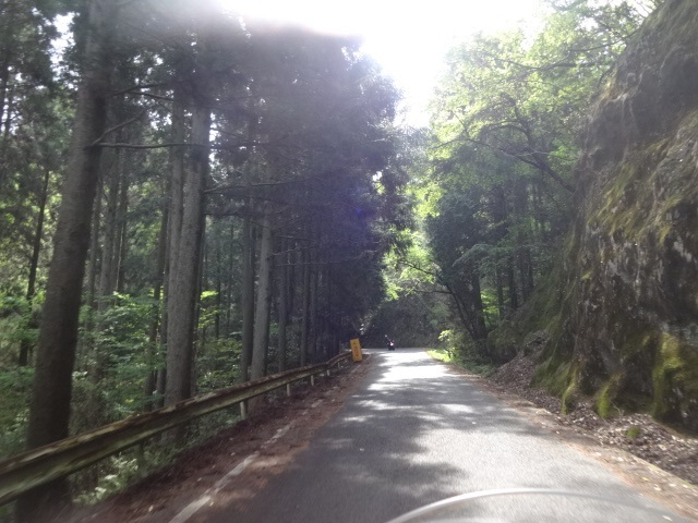 2日林道2