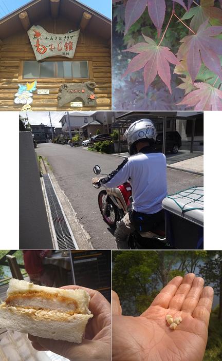 もみじ館4