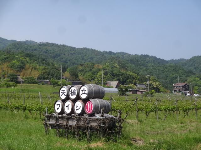 天橋ワイン
