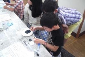 科学遊び 化石04