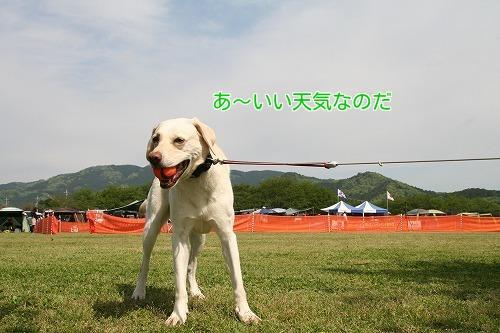 20170504_04.jpg