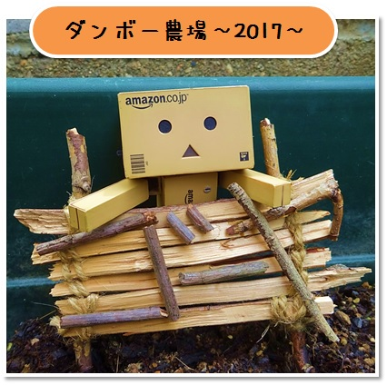 20170521_001.jpg