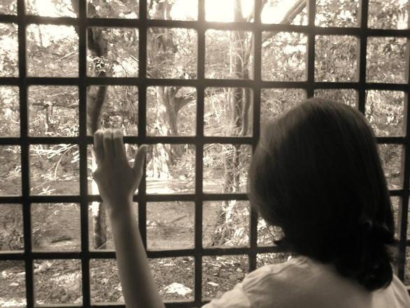 窓越し 希望 未来