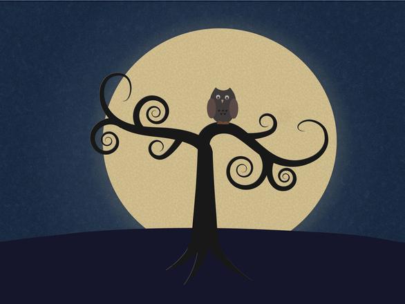 ふくろう 月光 満月