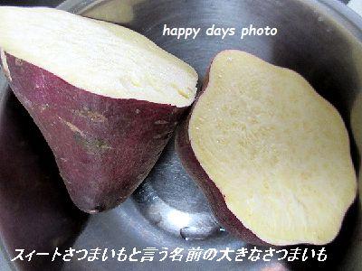 IMG_004555.jpg