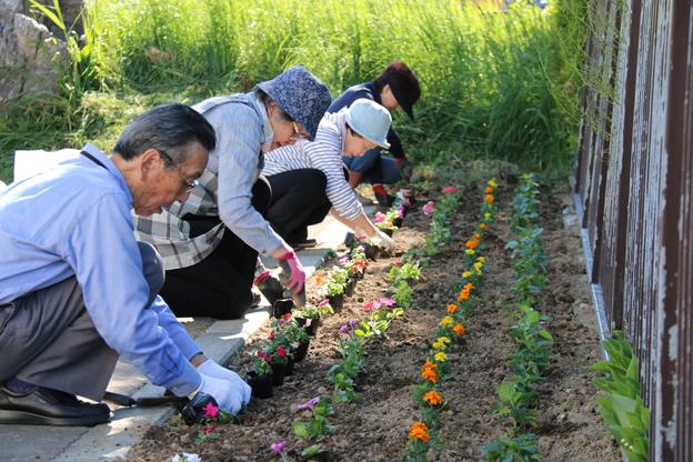 ブログ用(日本緑化花壇)