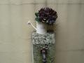 ナンフェア 紫陽花