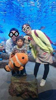新江ノ島水族館にて