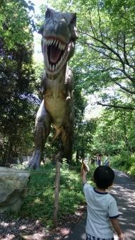 恐竜もいたよ