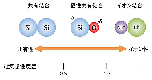 原子一個の電気陰性度の測定に成功