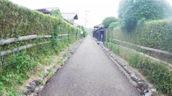 20170504_140259 (7)