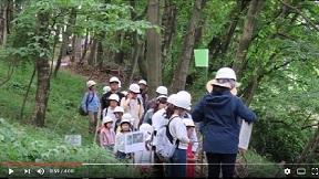 峯岸山・里山自然体験教室