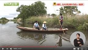 群馬県広報番組ぐんま一番「水郷に、たから育む鶴のくちばし☆板倉町」(H28.5.20放送)